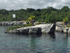 Akumal Lagoon outdoors