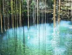 Swim and Explore the Freshwater Cenotes in Cancun