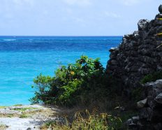 Tulum Ancient Mayan wall off ocean cliff
